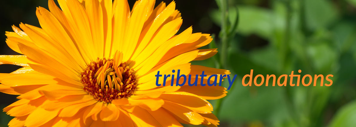 Tributary Donations